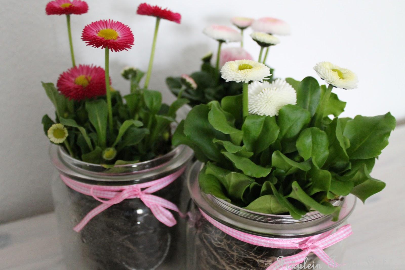 Tischdeko frühlingsblumen im glas  Tischdeko Frühlingsblumen Im Glas ~ artownit for .