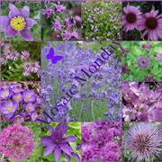 http://www.lavendercottagegardening.com/