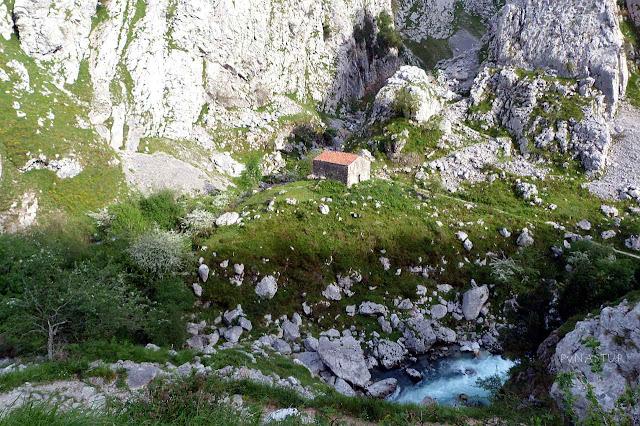 Cabaña de pastores entre los ríos Cares y Bulnes