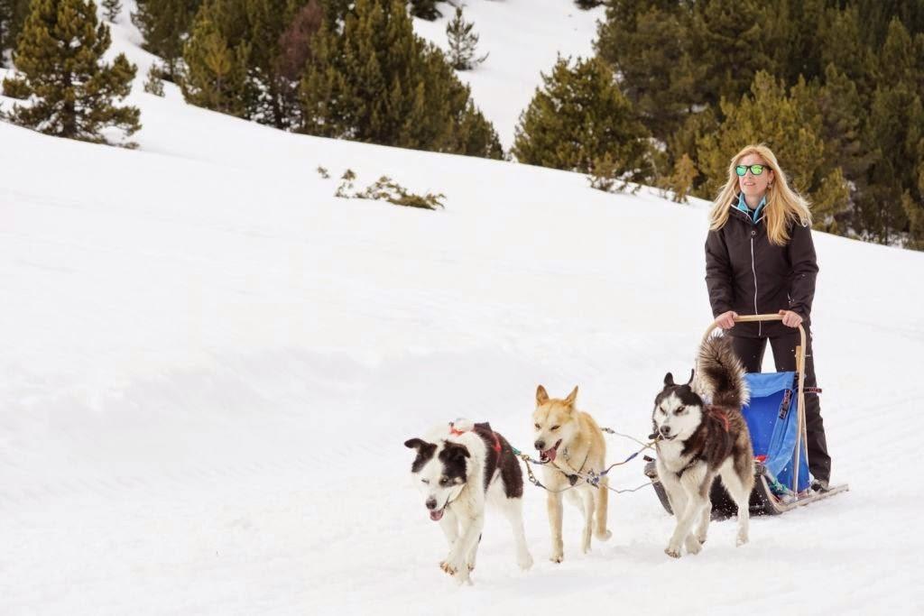Mushing trineos de perros Grandvalira Andorra