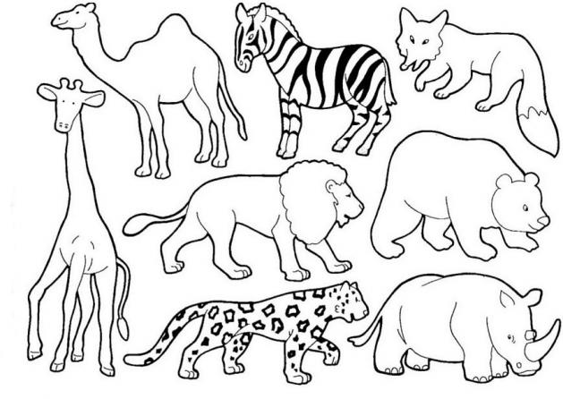LAMINAS PARA COLOREAR - COLORING PAGES: Animales para dibujar cortar ...