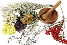 Recetas de hierbas para bajar de peso