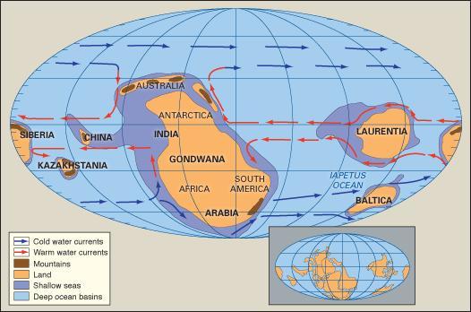 http://www.ciencia-online.net/2013/03/periodo-cambriano-fatos-e-informacoes.html