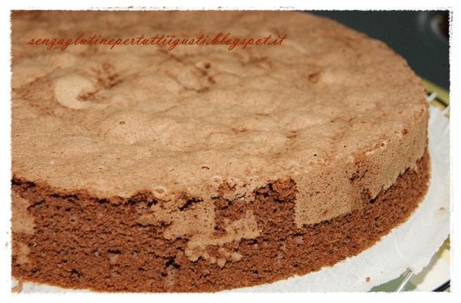 Senza glutine...per tutti i gusti!: Pan di Spagna senza glutine al ...