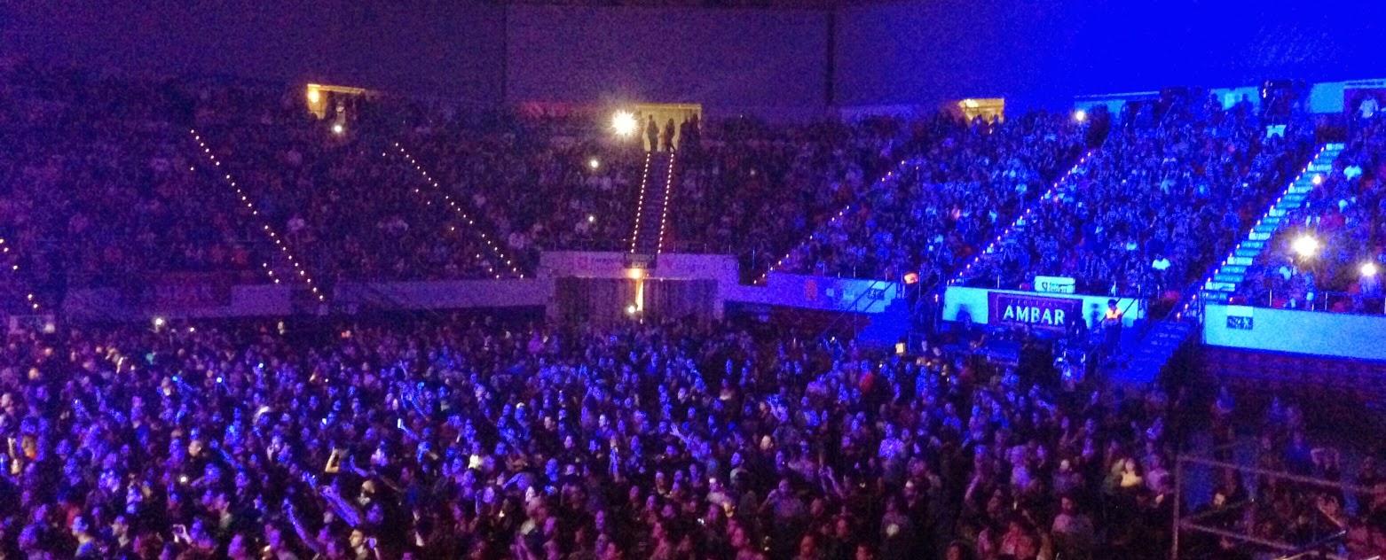 Concierto de Bunbury, de su gira Palosanto Tour 2014, en el Pabellon Principe Felipe de Zaragoza. Makoondo