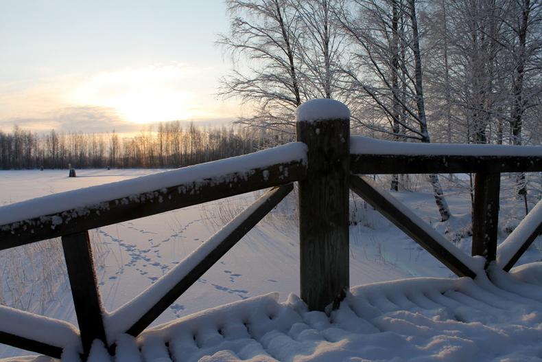 talvimaisema silta