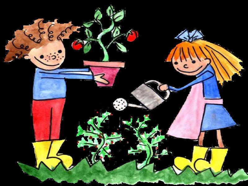 http://jardineriainfantil.com/