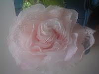 rose avec dentelle