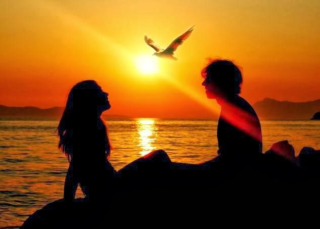 كيف أجعل حبيبي يحبني - حبيبان غروب الشمس الغروب طائر الحب - Love- sunset, love bird, silhouette, lovers