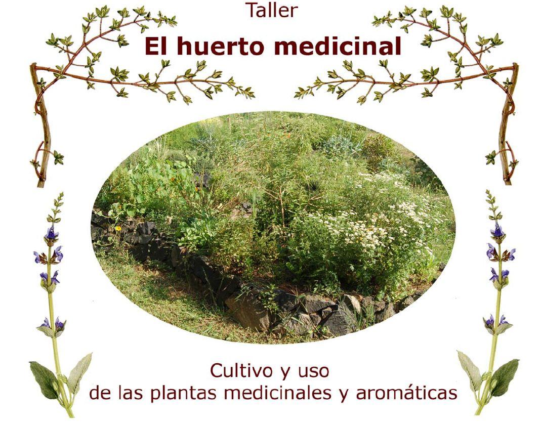 Trueke caracas manual de plantas medicinales for Cultivo de plantas aromaticas y especias