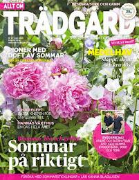 Allt om Trädgård nr9 2013