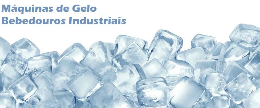máquinas de gelo *  bebedouros industriais