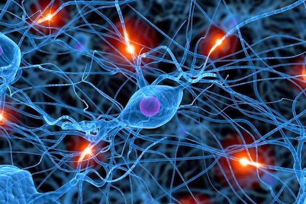 Satu Sel Otak Hancur, Setiap Kita Memarahi Anak