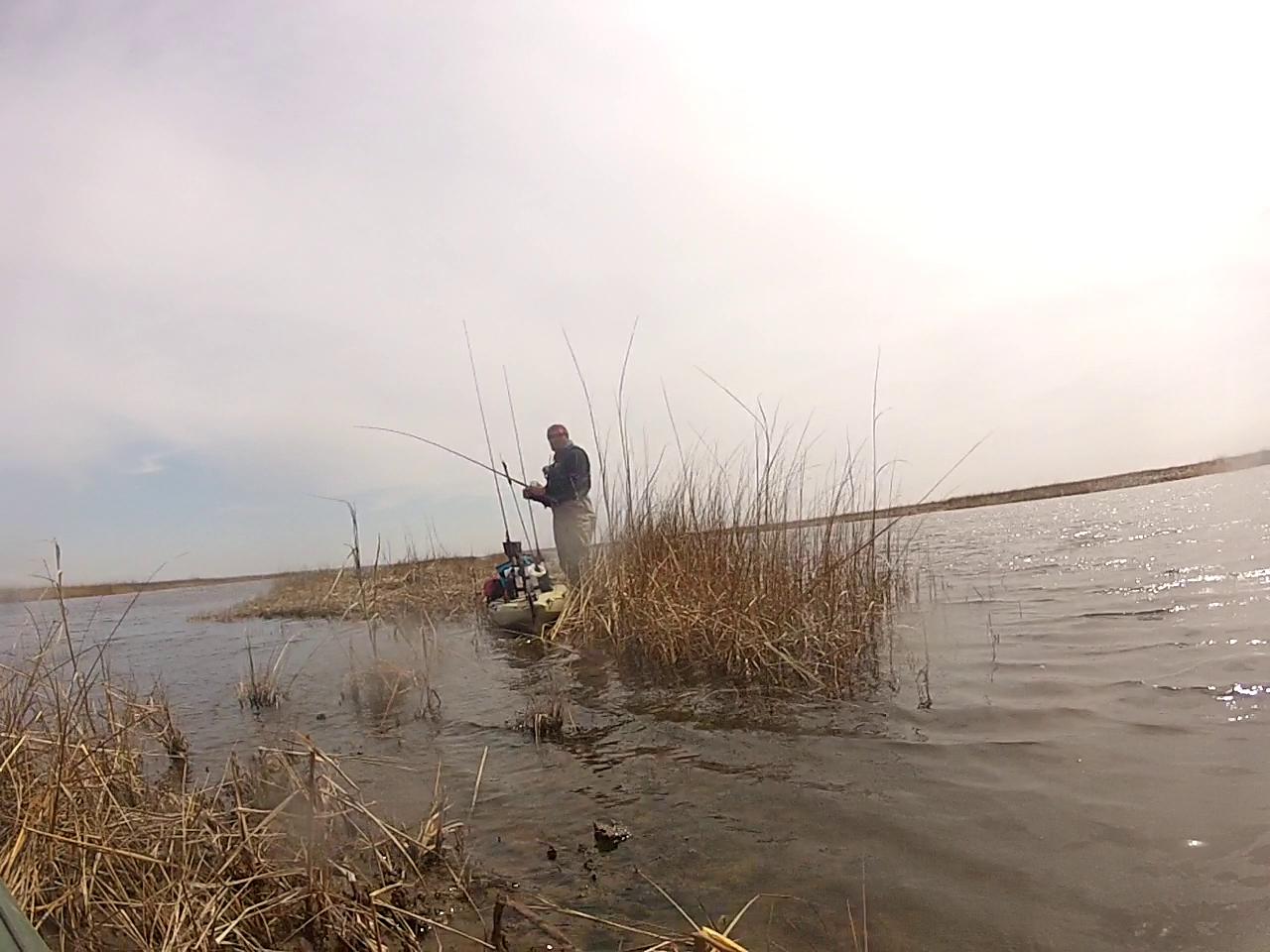New Jersey Fishing Report Fishing New Jersey Nj Fishing