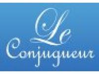 Gadget Conjugaison et Synonyme