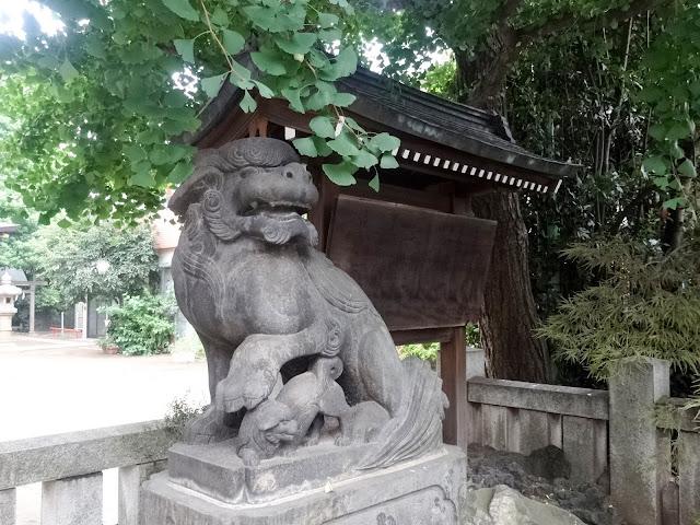 月見岡八幡神社,狛犬,新宿,落合〈著作権フリー無料画像〉Free Stock Photos