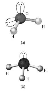 Ligan H2O dan NH3