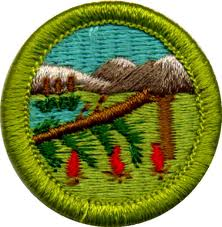 Bird study merit badge answers