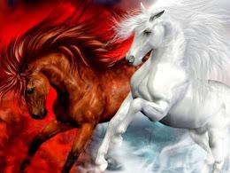 VIDEO Significado de los Caballos del Apocalipsis Caballo Blanco Parte 1