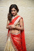 vithika sheru half saree photos-thumbnail-12