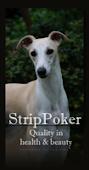 Strippoker