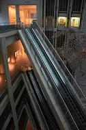 【愛知県美術館「マックス・エルンスト」「2012年第2期コレクション展」(愛知県名古屋市)】