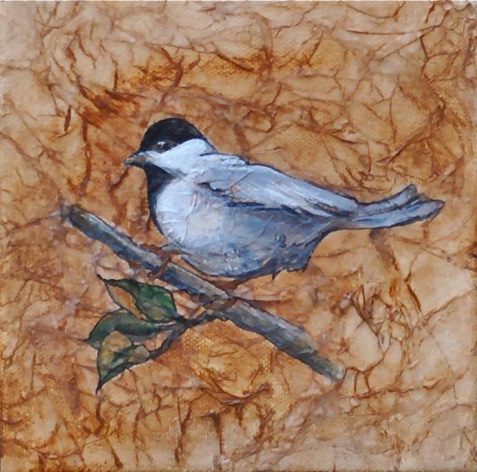 Laughing bird art for 3 little birds salon
