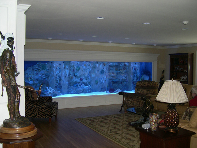 57000 gallon fish tank bing images for 10000 gallon fish tank