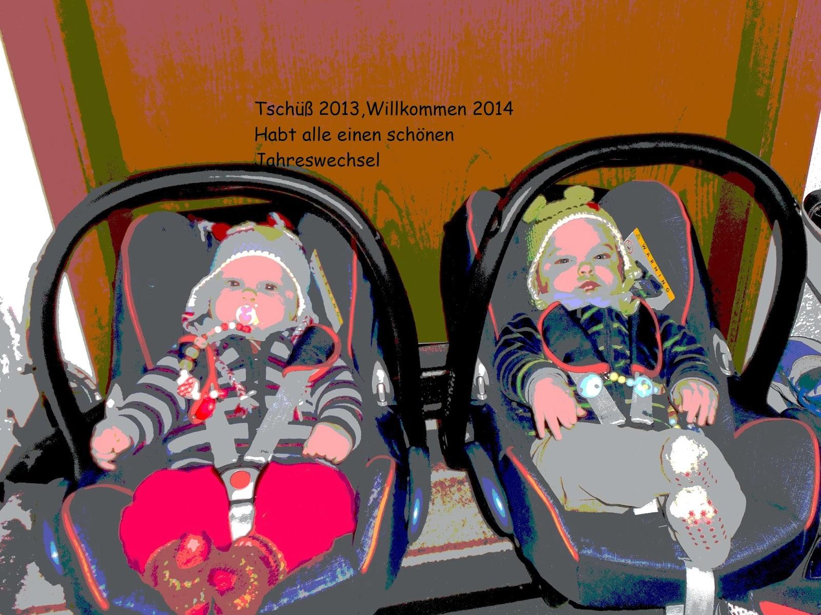 Wunschfroschen: 2013