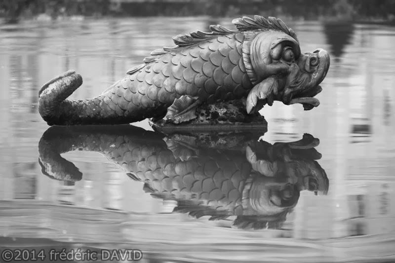 poisson statue noir et blanc château Vaux-le-Vicomte Seine-et-Marne