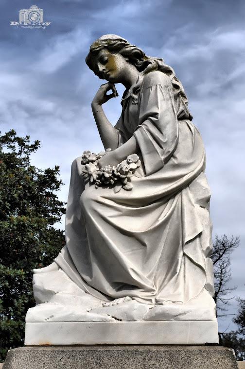 Wondering Angel