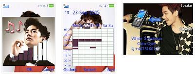 <br />李俊昊SonyEricsson手機主題for Elm/Hazel/Yari/W20﹝240x320﹞