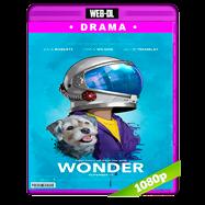 Extraordinario (2017) WEB-DL 1080p Audio Ingles 5.1 Subtitulada