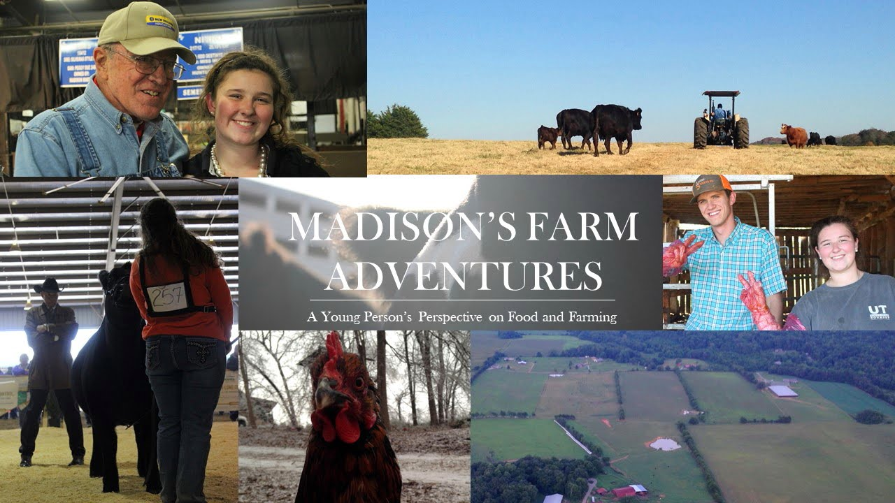 Madison's Farm Adventures