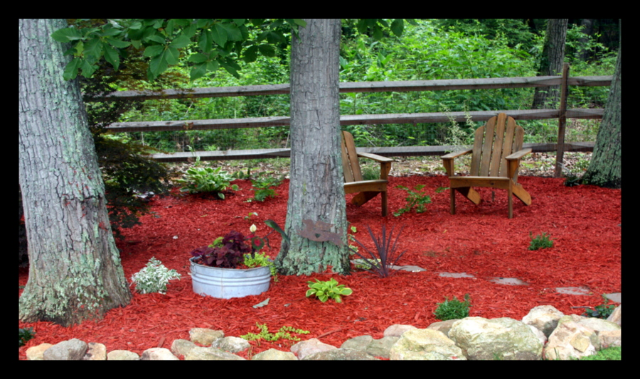 Be Still a Minute...: Red Mulch, a Black Snake, and a Brown Bird