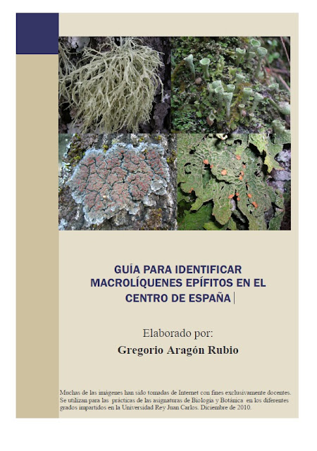 http://www.escet.urjc.es/biodiversos/espa/personal/goyo/Guia_macroliquenes_epifitos_con_fotos.pdf