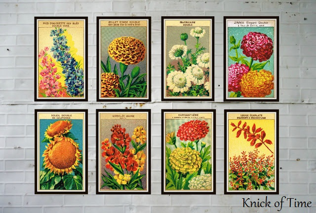 Seed-Packet-Flower-Antique-Graphic-Royalty-Free-Printables