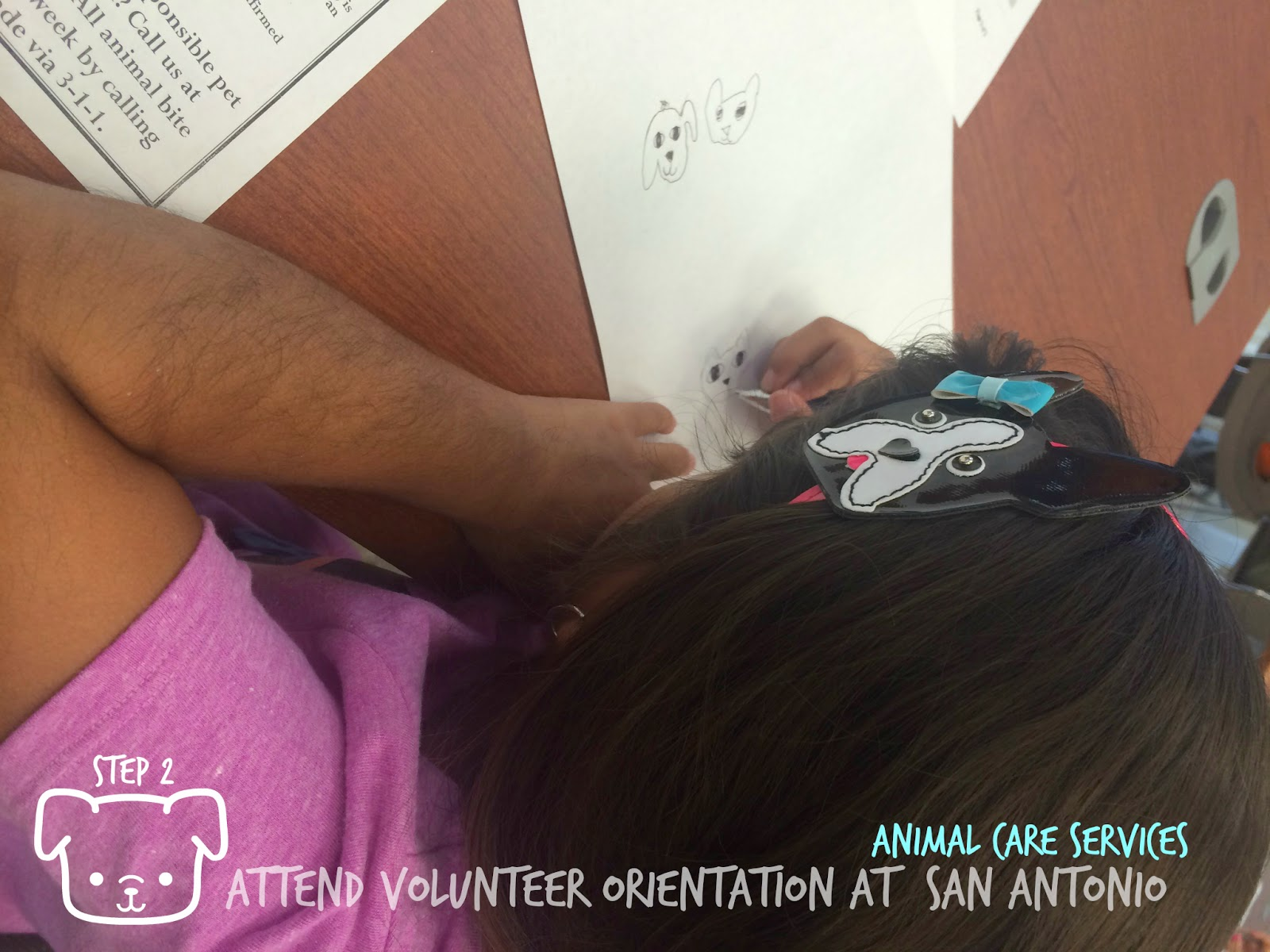 Steps to Volunteering with kids at the Animal Care Services of San Antonio