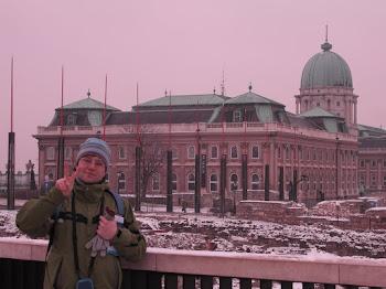 Davanti al palazzo reale di Budapest (2011)