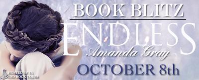 Book Blitz: Endless by Amanda Grey
