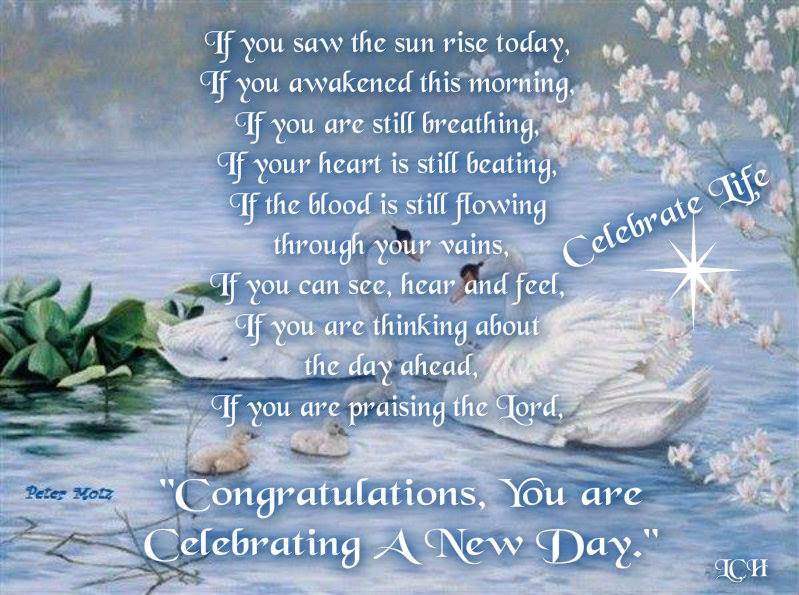 Congratulations, You Are Celebrating A New Day