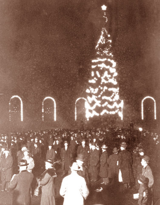 chicagos first christmas tree 1913 - Christmas Trees Chicago