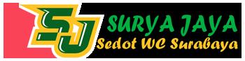 SEDOT WC MURAH SURABAYA | 0317915372 | 081515190054