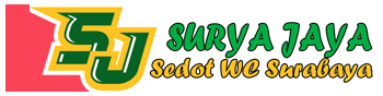 Info Terbaru Harga Sedot WC Surabaya