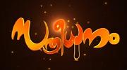 Sthreedhanam serial