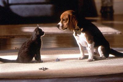 Perros y gatos famosos