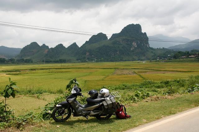 Nuestra moto y equipaje - Arrozales junto a la carretera. N. de Vietnam.