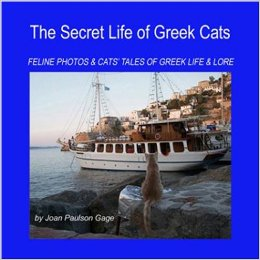 feline photos and cats' tales of greek life