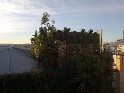 Visita de jardines verticales en Madrid
