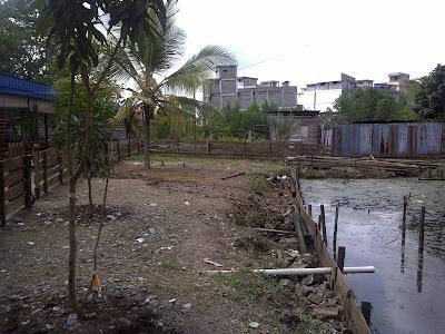 Hidroponik, Sungai Guntung, lahan tandus, fertigasi, hidroponik
